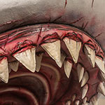 Scarey Megalodon shark teeth - dinosaur for hire