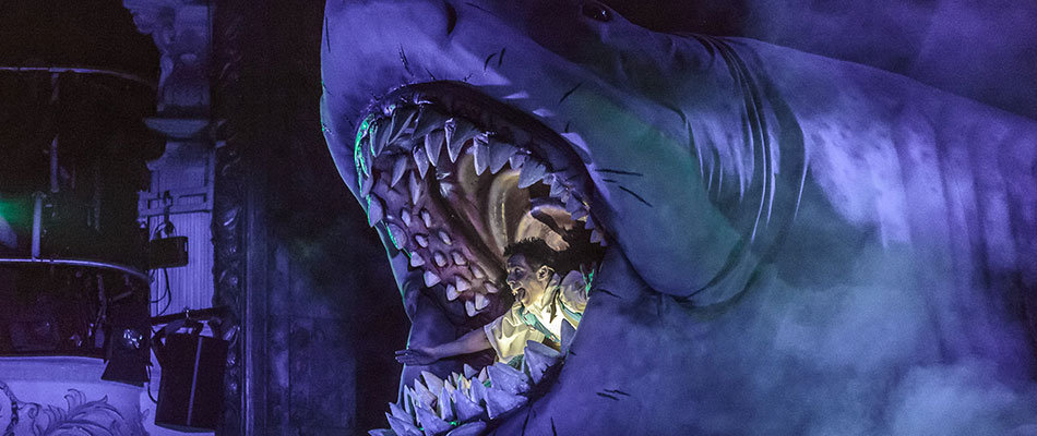 Bruce the Shark - megalodon dinosaur for hire